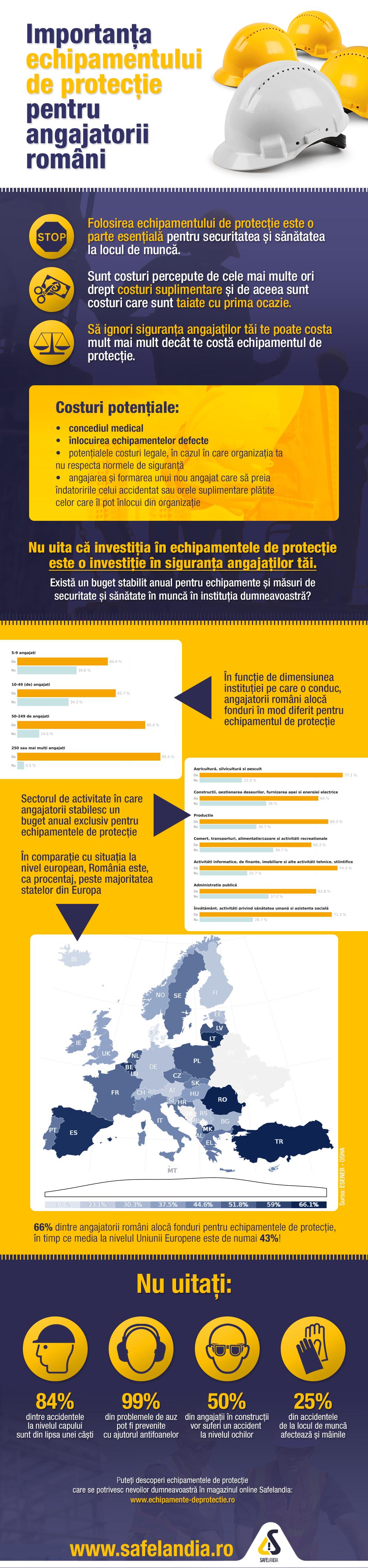 infographic9